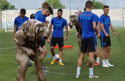 "Doi dintre fotbalistii transferati de FCSB au deja simptome! ""Au inceput sa behaie!"""