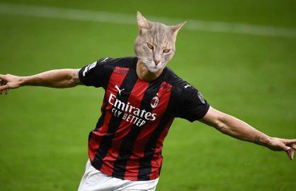 GALERIE FOTO | Cum ar arata cei mai mari fotbalisti ai lumii daca ar fi pisici